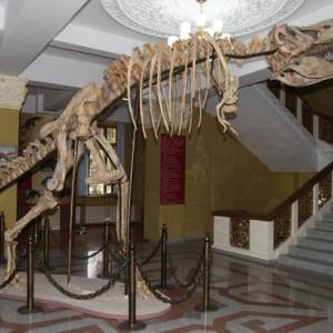 Фото Музей природы Алматы.