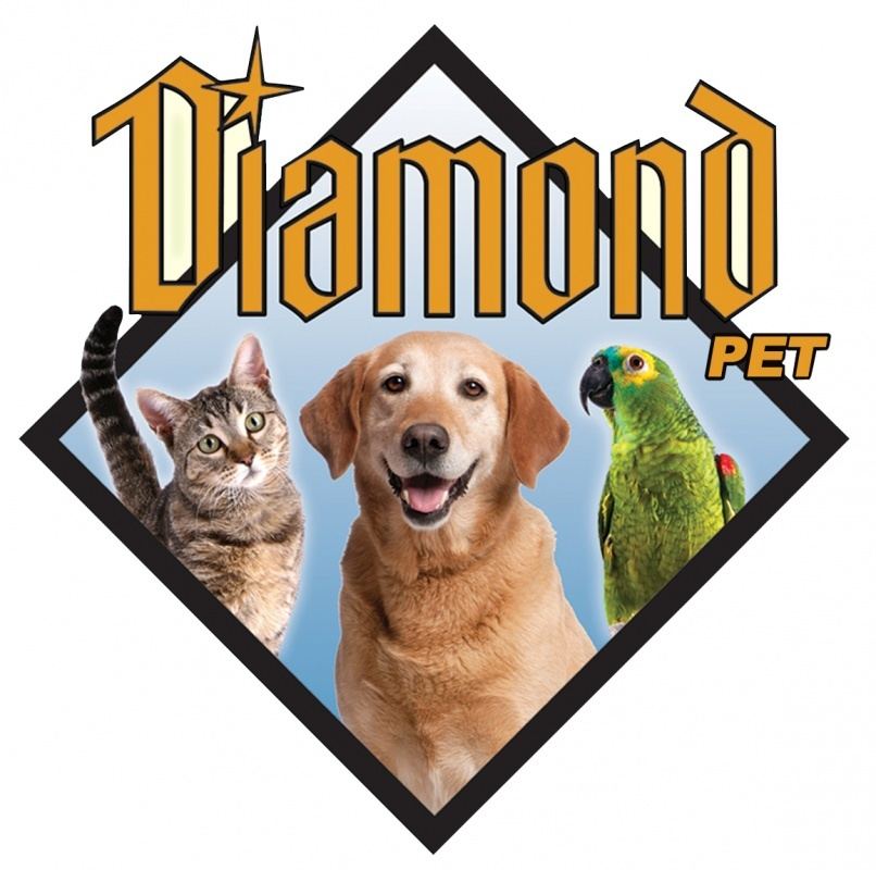 Фото DiamondPet