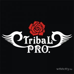 Tribal PRO