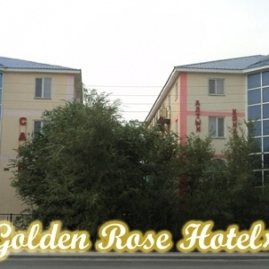 Фото Golden Rose
